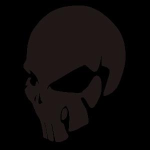 nalep_humanskull110